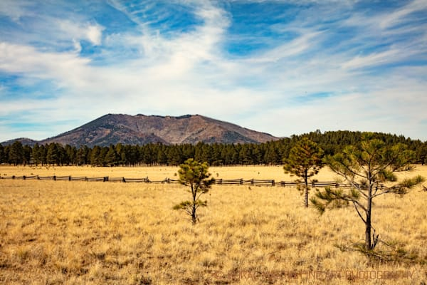Colorado Park Photograph 3230 | Arizona Photography | Koral Martin Fine Art Photography