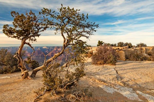 Grand Canyon View   3701 Photograph | Arizona  Photography |  Koral Martin Fine Art Photography