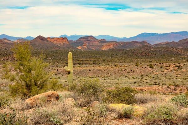 Lost Dutchman View Apache Trail Photograph 2078 | Arizona Photography | Koral Martin Fine Art Photography