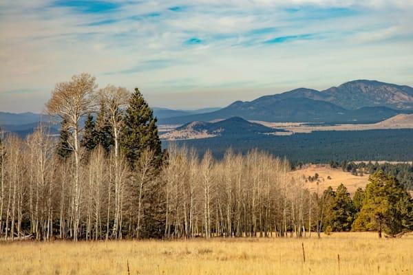 Snow Bowl View Photograph 3159 C | Arizona Photography | Koral Martin Fine Art Photography