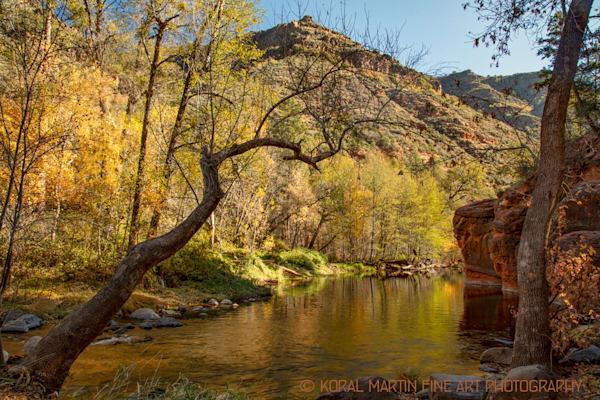 Oak Creek Canyon Photograph 2584  | Arizona Photography | Koral Martin Fine Art Photography