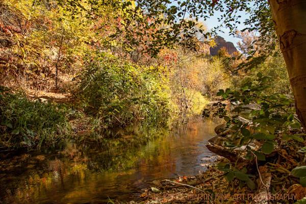 Oak Creek Canyon Photograph 2695  | Arizona Photography | Koral Martin Fine Art Photography