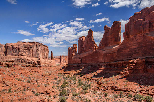 Arches View Photograph 6900  | Utah Photography | Koral Martin Fine Art Photography