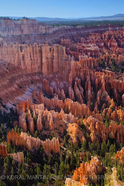 Bryce Canyon Photograph 3725 A  | Utah Photography | Koral Martin Fine Art Photography