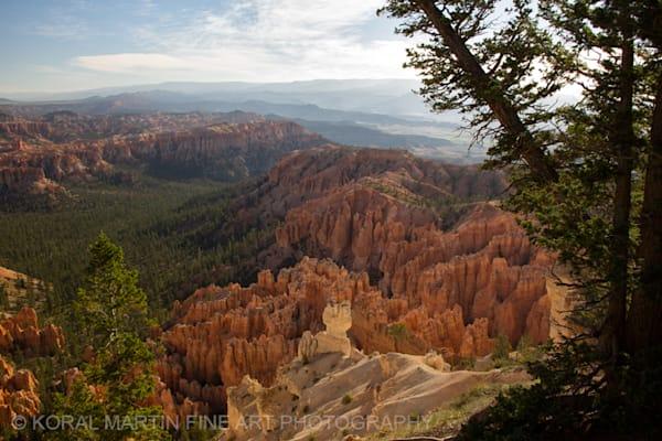 Bryce Canyon 4379g    Photograph   Utah  Photography    Koral Martin Fine Art Photography