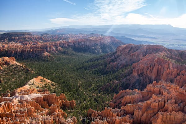 Bryce Canyon View Photograph 4429  | Utah Photography | Koral Martin Fine Art Photography