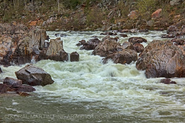 Johnson Shut-ins Photograph 2747  | Missouri Photography | Koral Martin Fine Art Photography