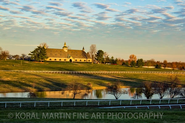 Kentucky Horse Farms IMG Photograph 6205 C  | Kentucky Photography | Koral Martin Fine Art Photography