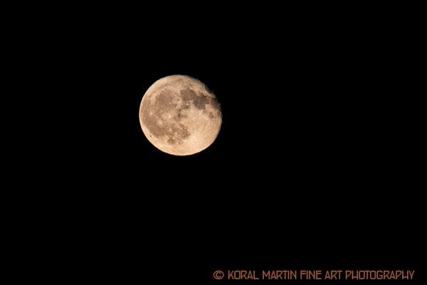 Moon Rising8974 JP K LF  | Kentucky Photography | Koral Martin Fine Art Photography