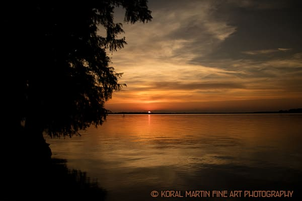 Sunset Reelfoot Lake Photograph 1291 LF  | Kentucky Photography | Koral Martin Fine Art Photography