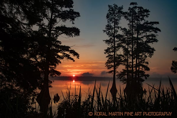 Sunrise Reelfoot Lake Photograph 0380 | Tennessee Photography | Koral Martin Fine Art Photography