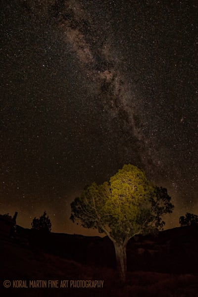 Milky way Photograph 8966 Kebler Pass  | Night Photography | Koral Martin Fine Art Photography