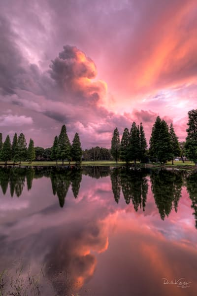 Clouded Pink Reflections