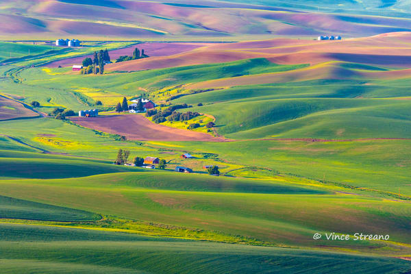 Springtime scene of a Palouse farm.