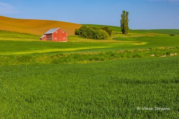 Red barn in Palouse wheat field