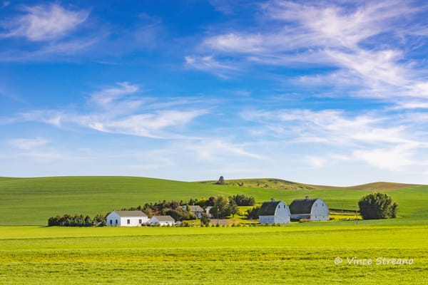 A farm scene on the Palouse in Washington state by photographer Vince Streano