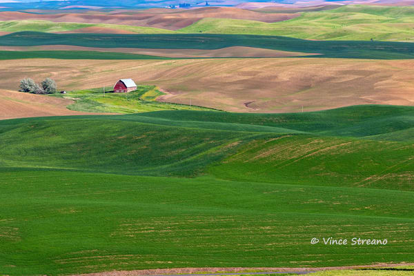 Red barn in a Palouse Washington landscape