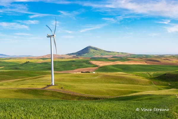 Palouse wheat field with wind tower