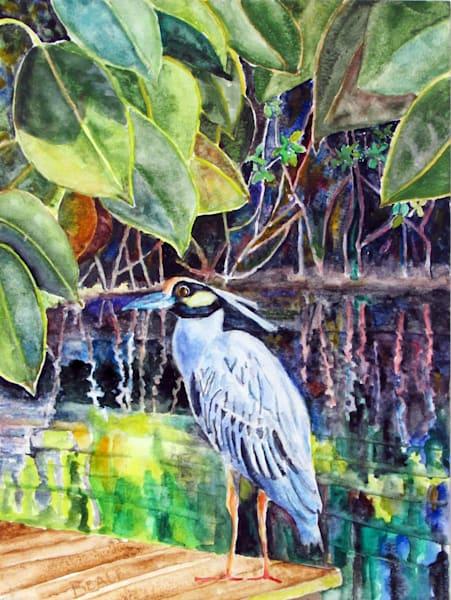 Yellow Crowned Night Heron Art | David Beale