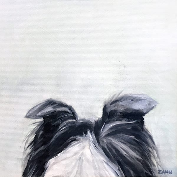 Border Collie Ears To You Art | Van Isle Dog Art