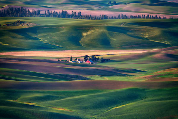 Nestled in the Hills by Rick Berk