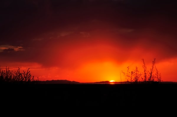 Syracuse Pasture Sunset