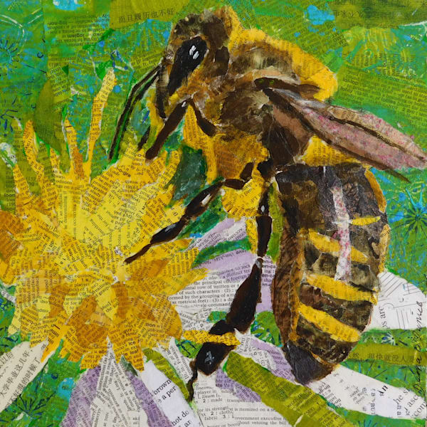 collage, animals, bees, bee, garden