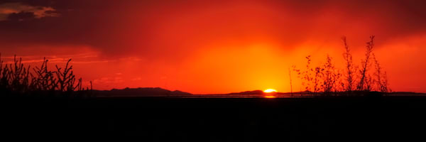 Syracuse Pasture Sunset 3x1