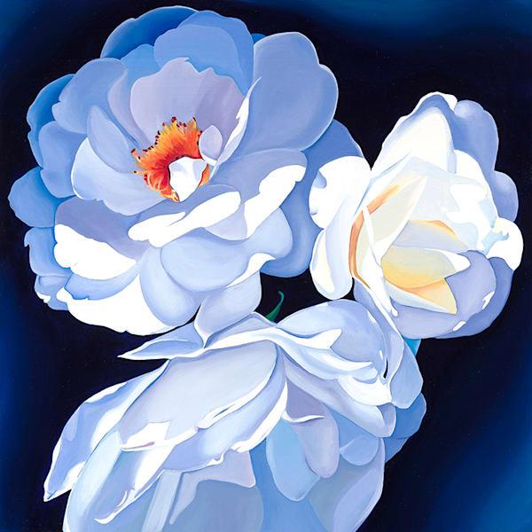 Bogal Roses Canvas Art   HFA print gallery