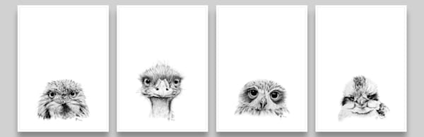 Feathered Pencil Collection - Kookaburra, Emu, Tawny Frogmouth and Boobook Owl