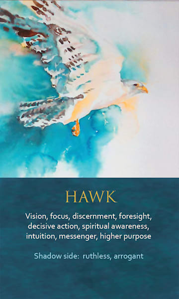 Hawk Spirit Animal Oracle Print