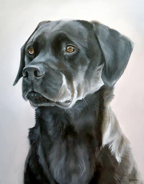 Portrait Of A Black Lab 2 Art by Van Isle Dog Art