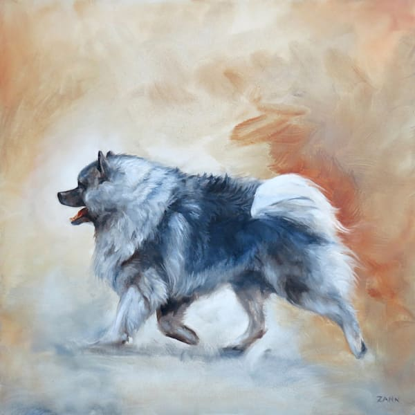 Keeshond On The Go Art | Van Isle Dog Art