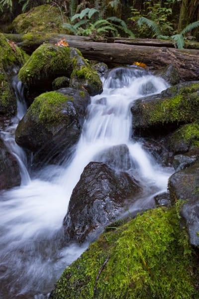 Fall Through The Rocks Photography Art | Leiken Photography