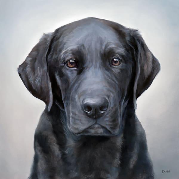 Oil Painting Print of a Black Lab, Portrait by Zann Hemphill