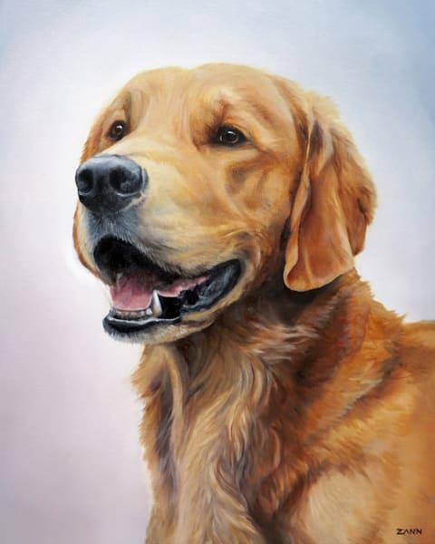 Golden Retriever Portrait 2