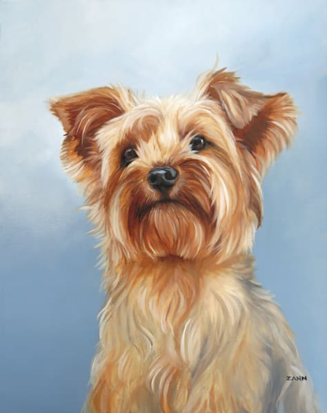 Yorkshire Terrier Portrait Print
