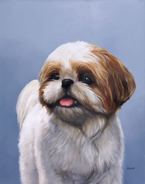 Print Portrait of a Shih Tzu Dog Oil Painting