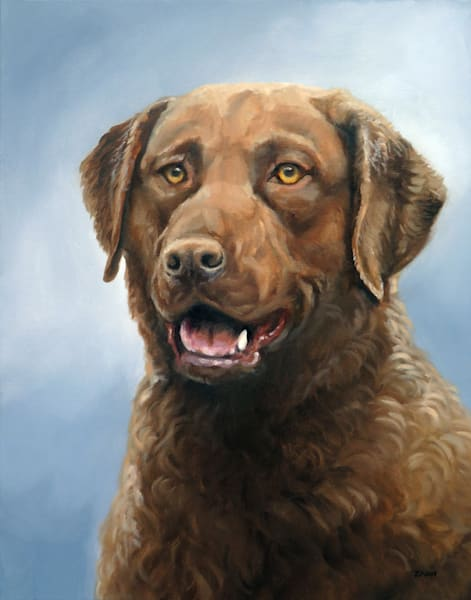 Print of Chesapeake Bay Retriever Dog Painted Portrait in Oil