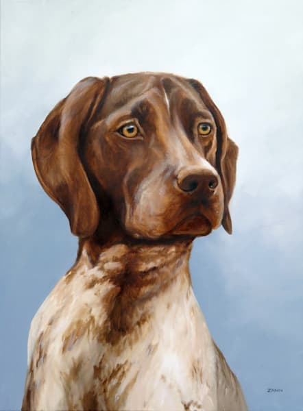 Prints of German Shorthair Pointer Dog Portrait by Zann Hemphill
