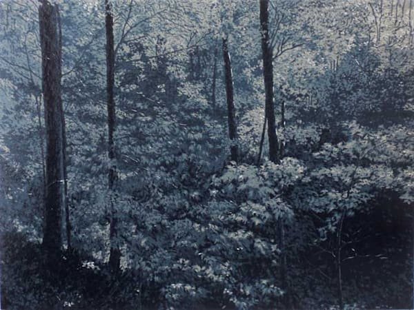 Forest In Moonlight, linocut print by William H. Hays
