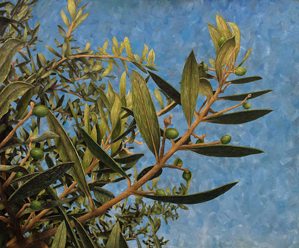 Olives À Claviers  Art | Fountainhead Gallery