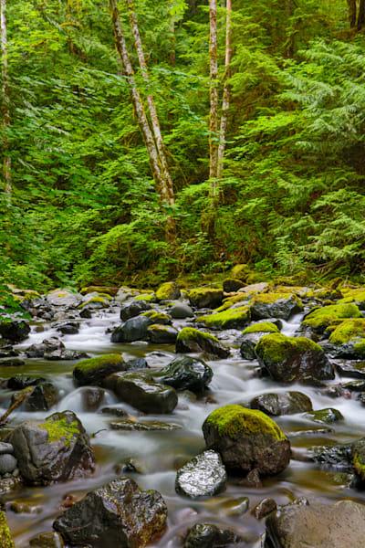 Pnw Rocky Brook Falls 3 Photography Art | John Martell Photography