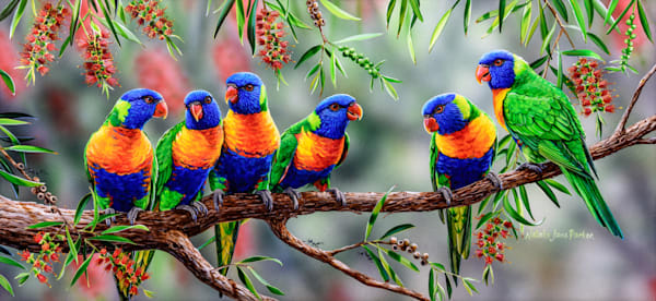 Colourful Chatter - Rainbow Lorikeet | Acrylic on Clayboard Painting