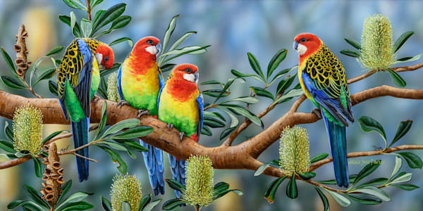 Banksia Friends - Eastern Rosella | Acrylic on Clayboard Painting