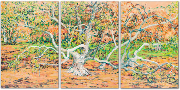 Fall Sycamore Tree Tryptic