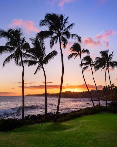 """""""Aloha Breeze"""""""