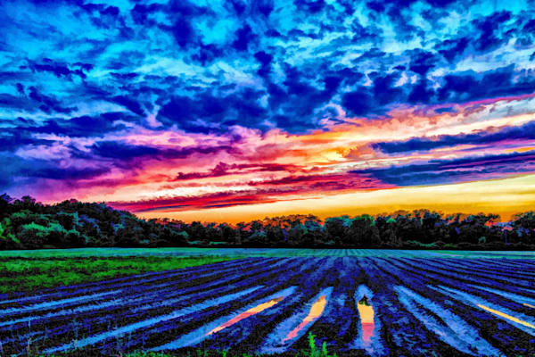 Sunset Reflection in a Plowed Field