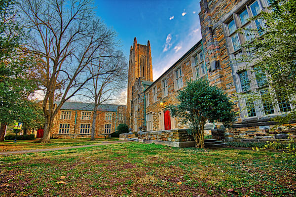 Dis Campus A Art | Nashville Noted Photography