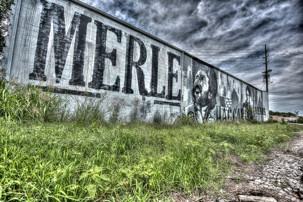 Merle 1 Art | Nashville Noted Photography